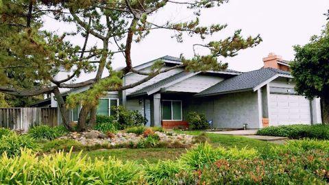45060 Parkmeadow Dr, Fremont, CA 94539