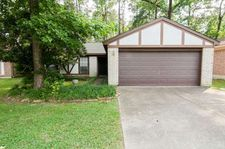 21 Dellforest Ct, The Woodlands, TX 77381