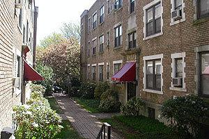 Photo of 16 Owen Street