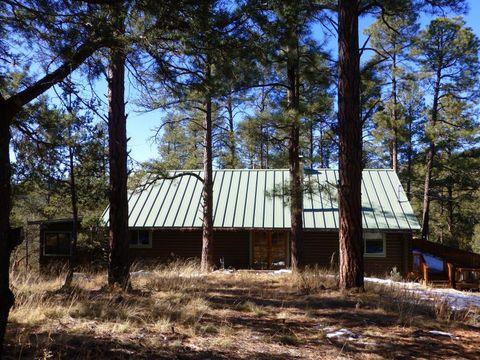 10 Little Cherry Ln, Silver City, NM 88061