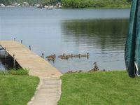 22320 Lake Dr, Pierson, MI 49339