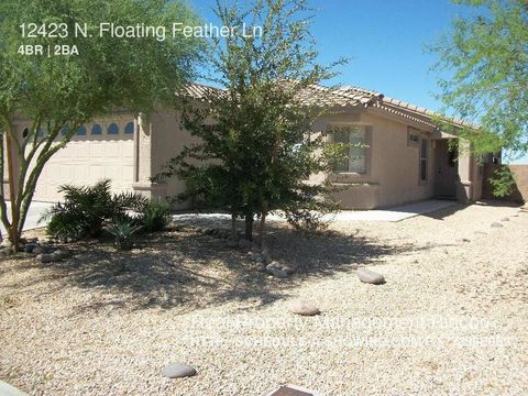 12423 N Floating Feather Ln, Marana, AZ 85658