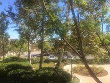 4499 Via Marisol Apt 116, Los Angeles, CA 90042