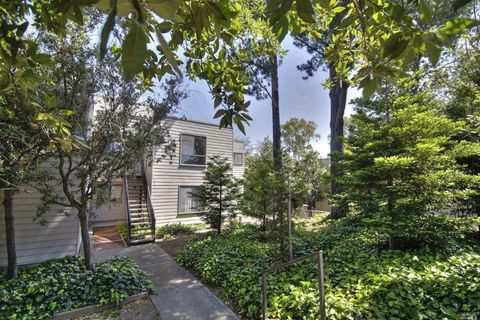 818 Via Casitas, Greenbrae, CA 94904