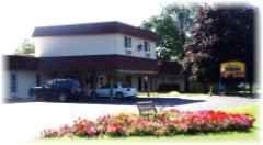 1125 W Saginaw Rd, Vassar, MI 48768