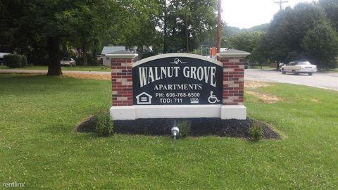 40 Walnut Grove Ct, Frenchburg, KY 40322