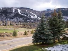451 Singletree Rd, Edwards, CO 81632