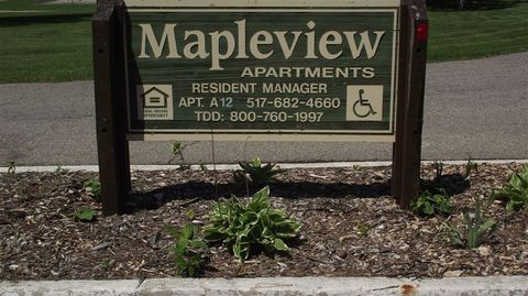 378 Poplar St, Maple Rapids, MI 48853