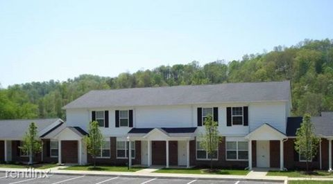 100 Robinson Rd, Stambaugh, KY 41257